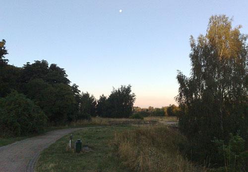 Park mit Mond am Himmel