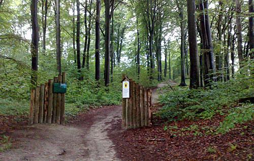 Wald mit Eingangspfeilern