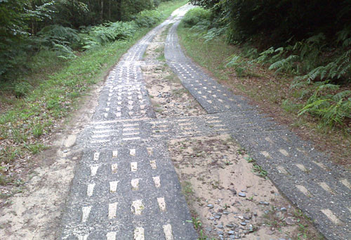 Weg mit Steinen