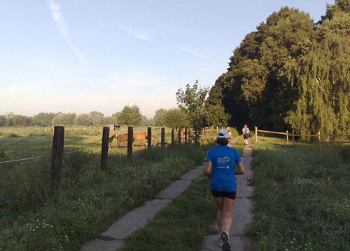 Läufer vor Pferdewiese