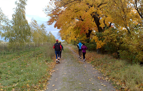Läufer neben Herbstbäumen