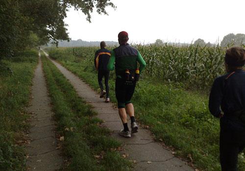 Läufer neben Maisfeld
