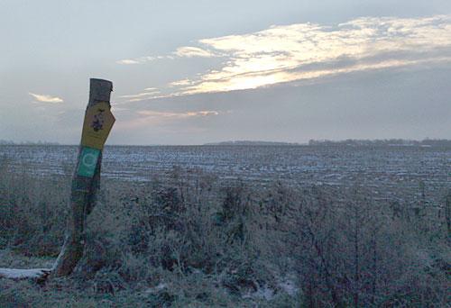 Feld vor Winterhimmel
