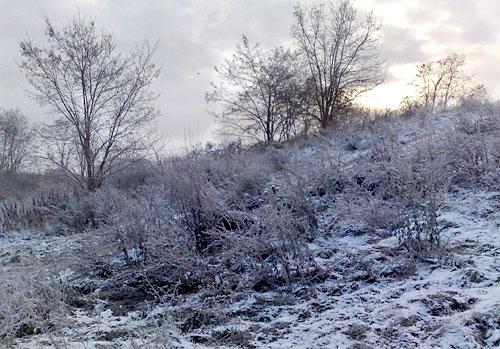 Schlehenberg im Winter