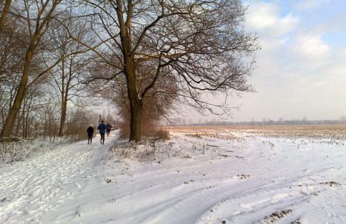 Schnee-Läufer zwischen Feldern