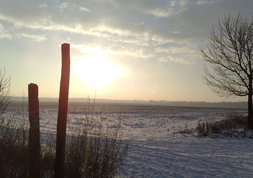Sonne über schneebedecktem Feld