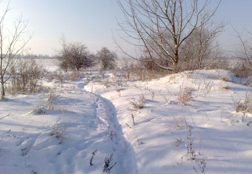 Verschneite Feldmark