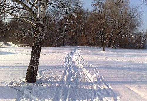 Schnee-Weg im Gutspark Marienfelde