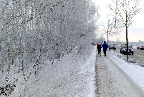 Läufer und verschneite Bäume