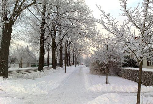 Läufer auf Weg im Schnee