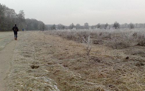 Winter-Lauf zum Hexenhäuschen bei Frost