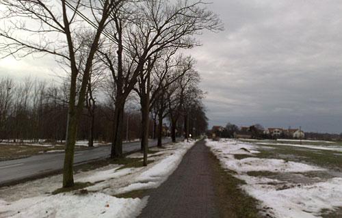 Straße und Feld bei Großziethen
