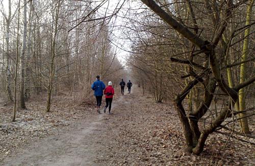Läufer zwischen kahlen Bäumen