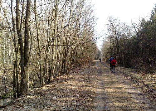 Läufer auf Waldweg