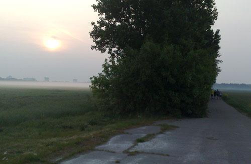 Sonnenaufgang, Nebel über den Feldern, Läufer
