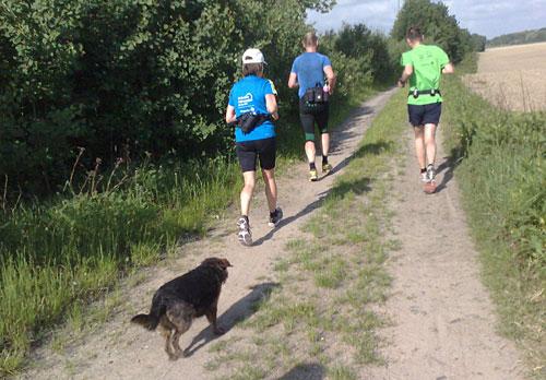 Läufer-Gruppe mit Hund
