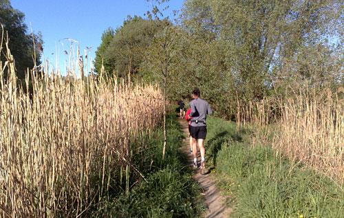 Läufer am Mahlower Seegraben