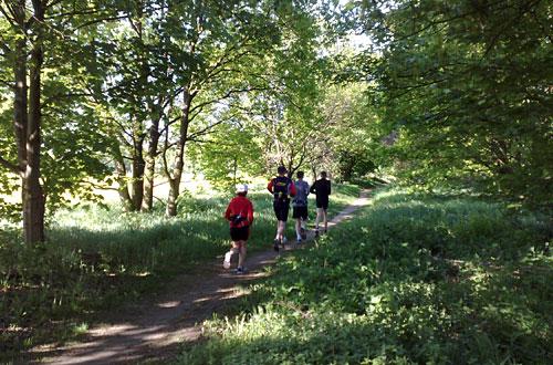 Läufer im Wald neben einem Feld
