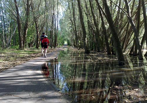 Läufer auf teilweise überflutetem Mauerweg