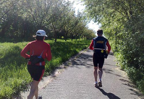 Läufer neben der Kirschbaumallee am Mauerweg
