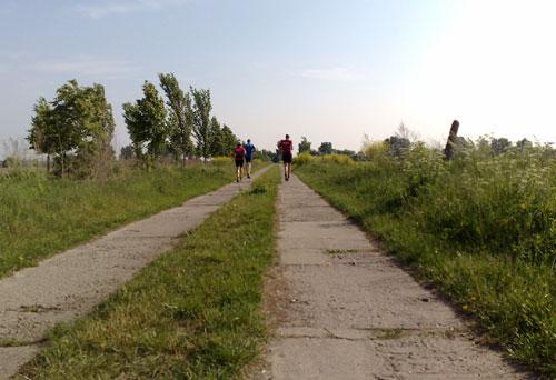 Läufer auf Plattenweg