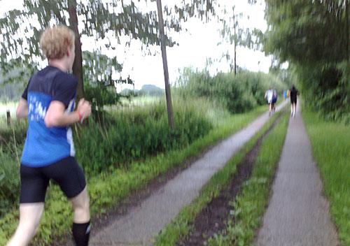 Läufer auf Plattenweg zwischen Wiesen