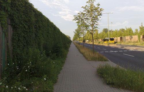 Fußweg an der B101