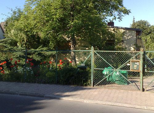 Häuschen-Idylle mit Mohnblumen im Garten