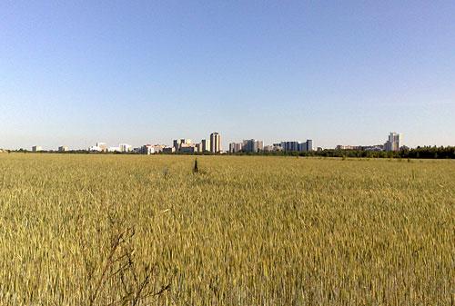 Gropiusstadt am Horizont hinter einem Feld