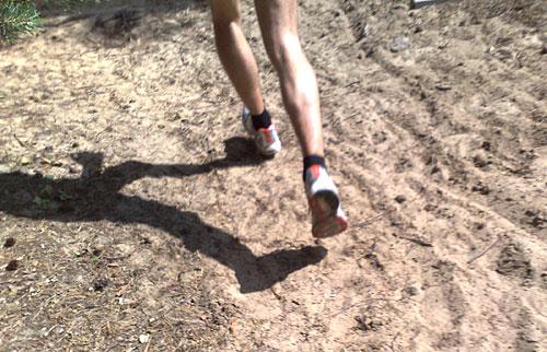 Läuferbeine auf Sand