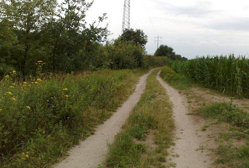 Feldweg zwischen Bahnlinie und Maisfeld