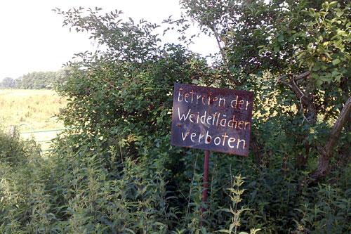 Schild Betreten der Weideflächen verboten
