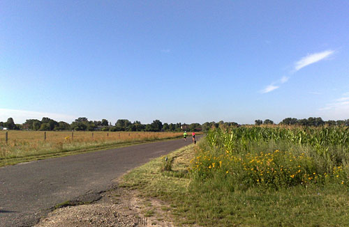 Läuferinnen auf Straße neben Maisfeld