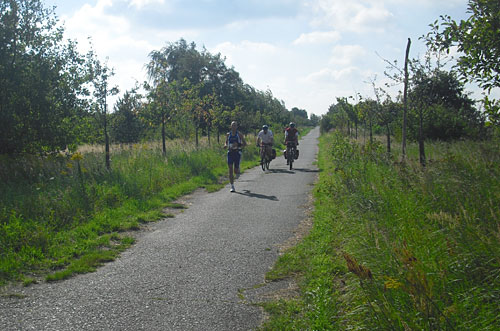 Läufer mit Begleitfahrrädern auf dem Mauerweg