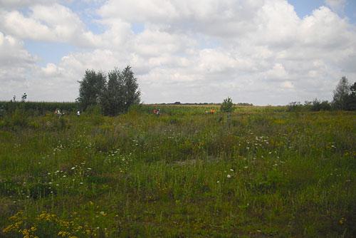 Läufer auf dem Mauerweg zwischen den Feldern