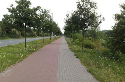 Gepflasterter Rad- und Fußweg, schnurgerade bis zum Horizont