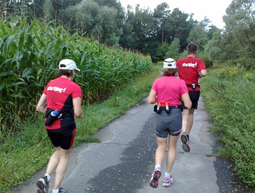 Läufer zwischen Maisfeldern und Wald