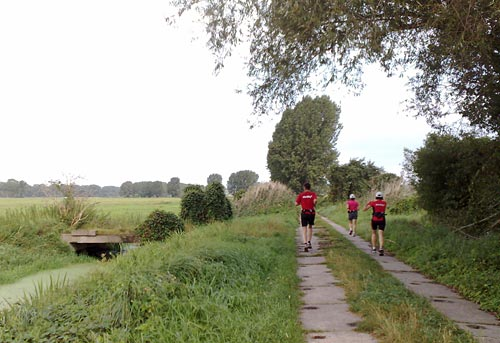 Läufer neben Kanal und Wiesen