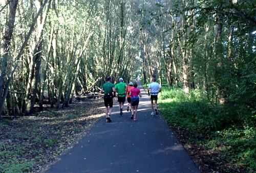 Läufer in einem Wäldchen auf dem Mauerweg