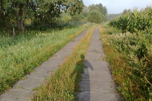 Läufer-Schatten auf Weg