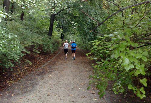 Läuferinnen auf Parkweg zwischen Bäumen