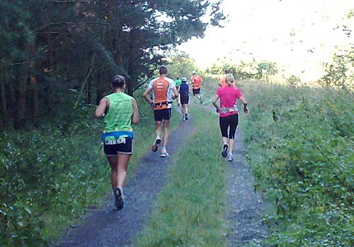 Läuferinnen und Läufer auf einem Waldweg