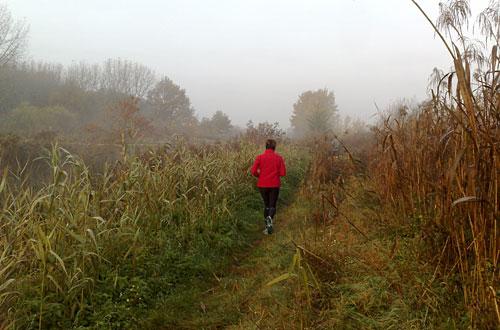 Läufer auf Pfad am Wasser, Landschaft im Nebel