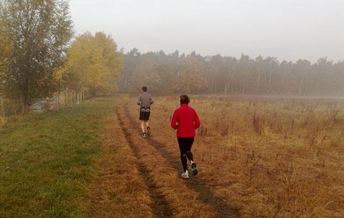 Läuferin und Läufer in herbstlich gefärbter Landschaft