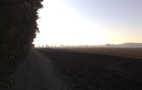 Felder in der Sonne