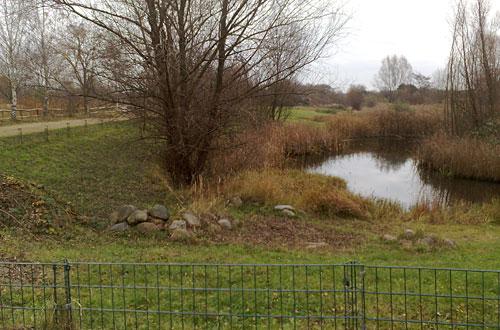 Teich im Freizeitpark Marienfelde