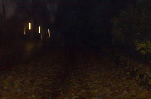 Dunkle Straße mit Blättern auf dem Weg