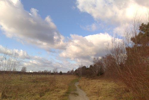 Schmaler Pfad neben einer wilden Wiese und Wolken am blauen Himmel