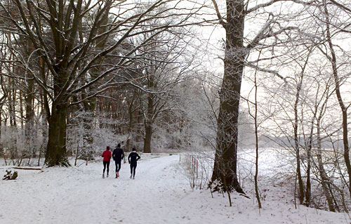 Läufer-Gruppe im Schnee zwischen Bäumen