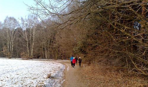 Läuferinnen und Läufer auf Weg neben Feld